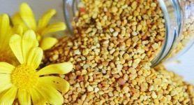 Aminoasit ve Protein Zengini Polen